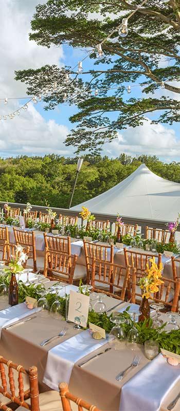 kauai weddings tent and reception