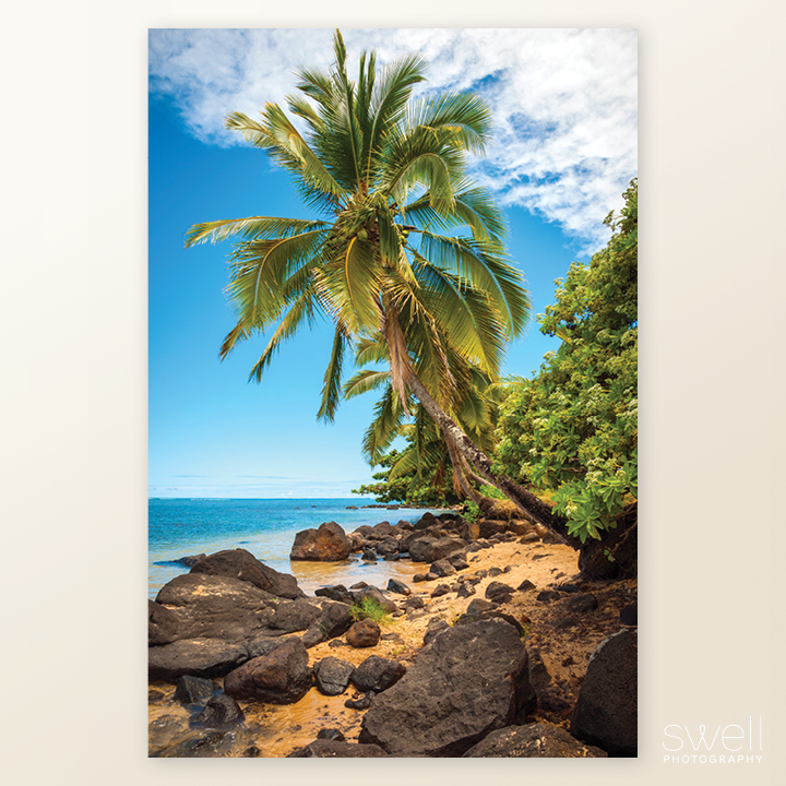 Anini Paradise Kauai Photography