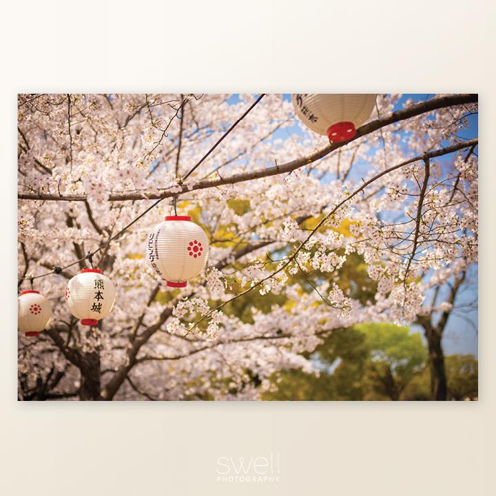 japan-cherry-blossom-art-2