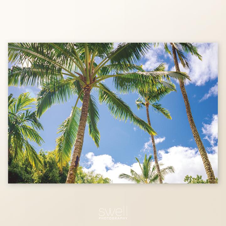 kauai hindu monastery palm tree art